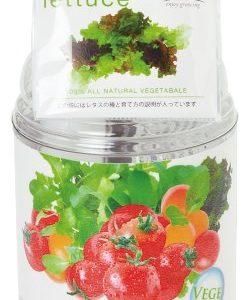 水耕栽培キット|ペットボトルを使ったミニタイプのおすすめセットを紹介