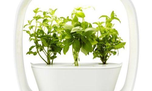水耕栽培キット|LED照明付き!自宅で本格的に始める人気セット